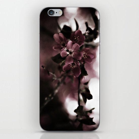 Cherry Cordial iPhone & iPod Skin