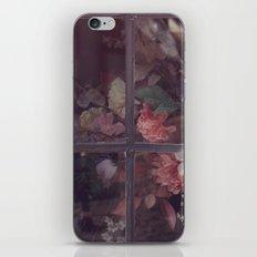 Rye iPhone & iPod Skin