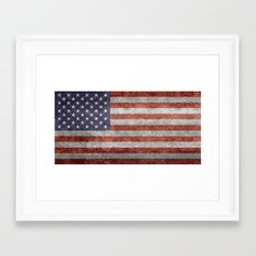 The United States of America Flag, Authentic 10:19 G-spec Desaturated version Framed Art Print
