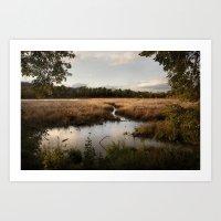 Oaks Bottom Wildlife Ref… Art Print