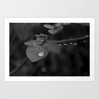 Tear Drop Black & White  Art Print
