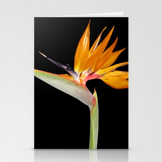 Birds of Paradise Flower Stationery Card