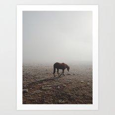 Fogged Horse Art Print