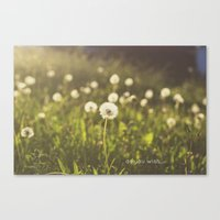 As you wish... Canvas Print