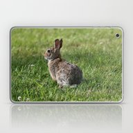 Laptop & iPad Skin featuring Bunny Fellow by Kealaphotography