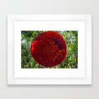 Red Ball of Flowers Framed Art Print