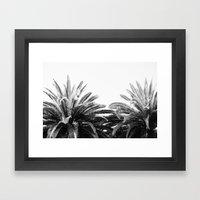 BW Palms  Framed Art Print