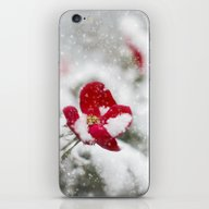 Merry Christmas I iPhone & iPod Skin