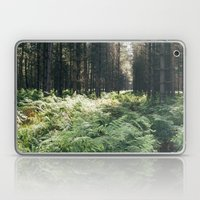 Fern growing among a dense pine forest on a hot summers day. Norfolk, UK. Laptop & iPad Skin
