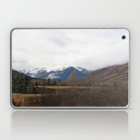Turnagain Pass Laptop & iPad Skin