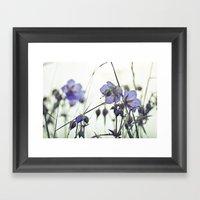 Sunlit Meadow Crane's-bi… Framed Art Print