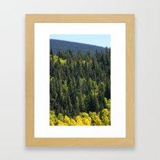 Many Shades Of Trees Framed Art Print