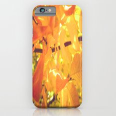 A slice of Autumn  Slim Case iPhone 6s
