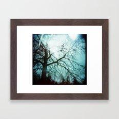 Winter Tree Holga Framed Art Print