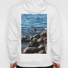 Rocks on the Water Hoody