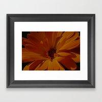 orange explosion Framed Art Print