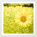 Smiling sunflower Art Print