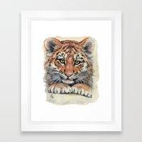 Cute Tiger Cub 903 Framed Art Print
