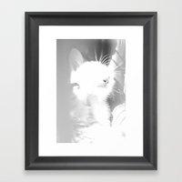 Bliss Kitten 4 Framed Art Print