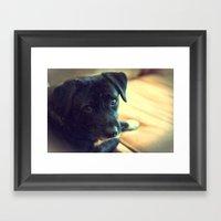 Mosby Framed Art Print