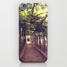 Lemon Grove in Ravello, Italy Slim Case iPhone 6s