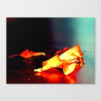 Lily II Canvas Print