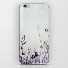 Landscape 1 (cold tones) iPhone & iPod Skin