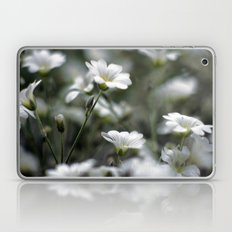 Snow In Summer Laptop & iPad Skin