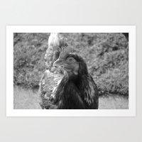 Grayscale Chicken (Ethel… Art Print