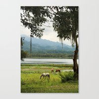 Honduras - A quiet Wednesday Canvas Print