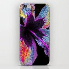 Royal Hawaiian Hibiscus iPhone & iPod Skin