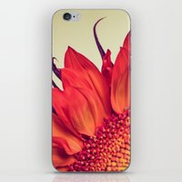 Fire iPhone & iPod Skin