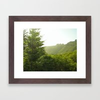California Coast Trees II Framed Art Print