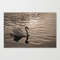 Drifting in Thought Canvas Print