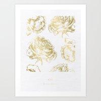 Roses Gold Art Print