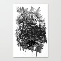 Vulture and Pine Canvas Print