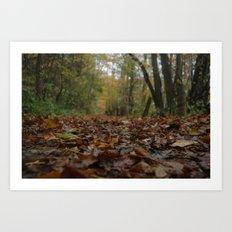 A quiet walk. Art Print