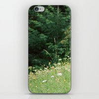 Wildflowers 2 iPhone & iPod Skin