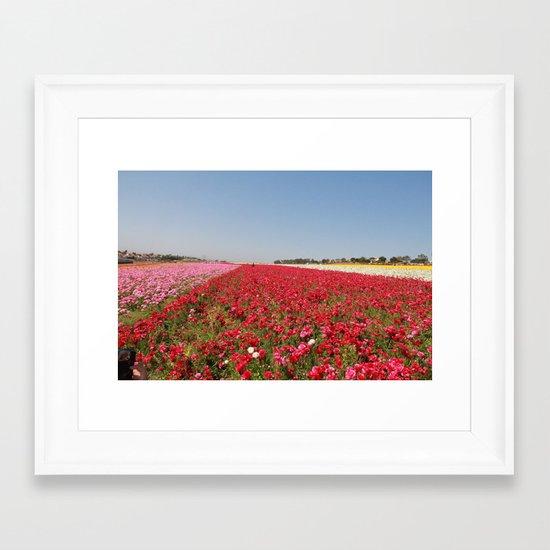 Flower fields Framed Art Print