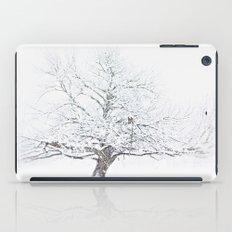Blizzard iPad Case