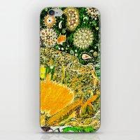 Jardin 2 iPhone & iPod Skin