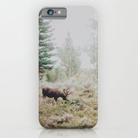 iPhone & iPod Case featuring Moose 1 by Leslee Mitchell