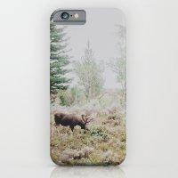 Moose 1 iPhone 6 Slim Case