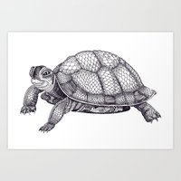 Turtle Pattern Art Print