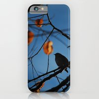 iPhone & iPod Case featuring Little Bird by iamtanya