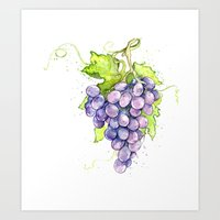 Fruit - Merlot Grapes Art Print