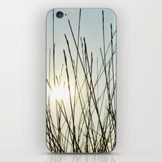 sunday afternoon iPhone & iPod Skin