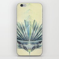 The Feathered Tribe Abstract / II iPhone & iPod Skin