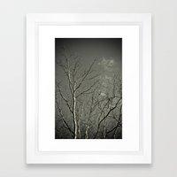 Tree #2 Framed Art Print