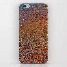 Jupiter Coast iPhone & iPod Skin